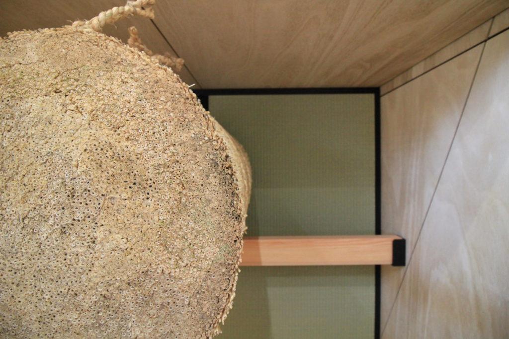 弓道場のある平屋の家イメージ3